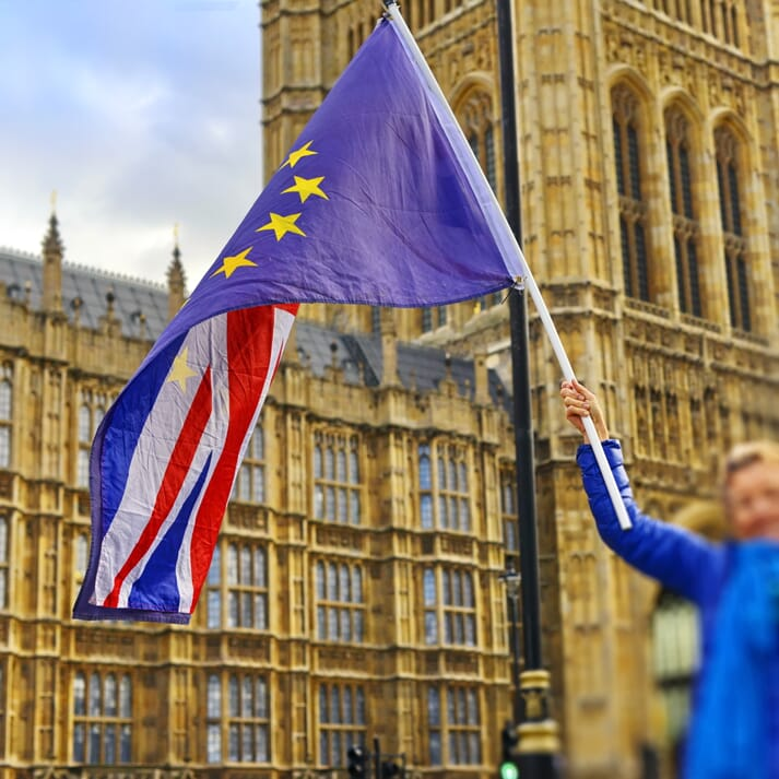 woman waves EU flag outside Westminster
