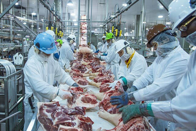 meat plant workers in a processing plant