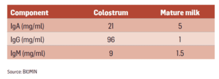 Table 2 - Immunoglobulin content in sow colostrum and sow milk