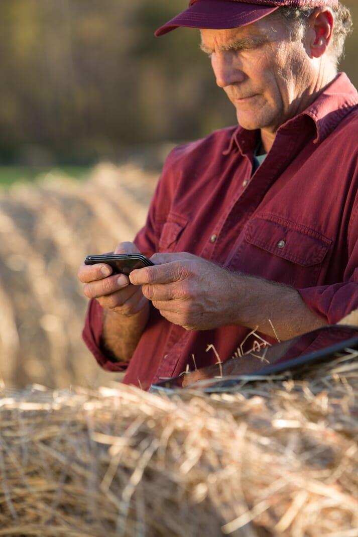 farmer looking at mobile phone on farm