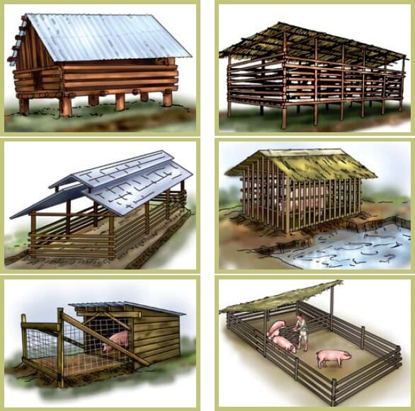 types of pig housing and positioning based upon recommendations by the FAO for pig producers in Vietnam