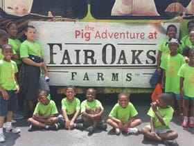 the pig site, pork production, fair oaks farms, the pig adventure,carla wright