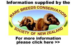 Rare Breeds Conservation Society Of New Zealand