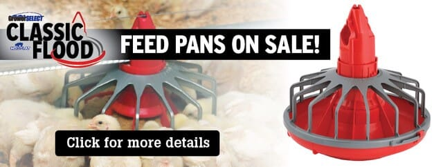 Feed Pans On Sale Now