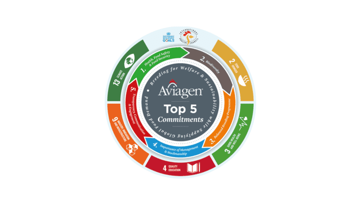 Breeding sustainability - Aviagen underlines commitment to International Poultry Council's five priority Sustainable Development Goals thumbnail image