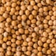 Daily US grain report: markets pressured Monday by keen uncertainty amid coronavirus fears thumbnail image