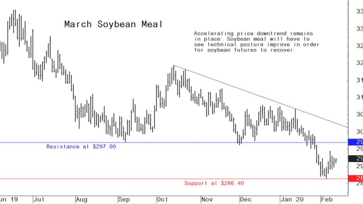 Here's what happened this week in the US grain market thumbnail image