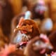 India Adds Cock-Fighting Chicken to Indigenous Breeds List thumbnail image
