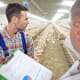 Poultry farmers and academics come together to bridge research gap thumbnail image