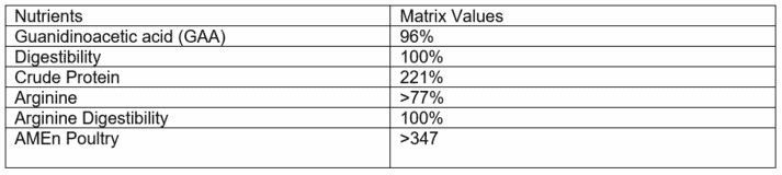 Table 2. GuanAMINO Matrix