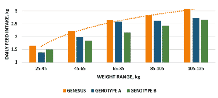 Figure 2. Comparative daily feed intake guidelines by genotype, mixed sex and corn soy diets