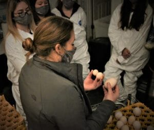 Kristin Moncada discusses various deformities that can occur during poultry breeding that inhibit proper development and viable hatchlings and the potential contributing factors to each imperfection.