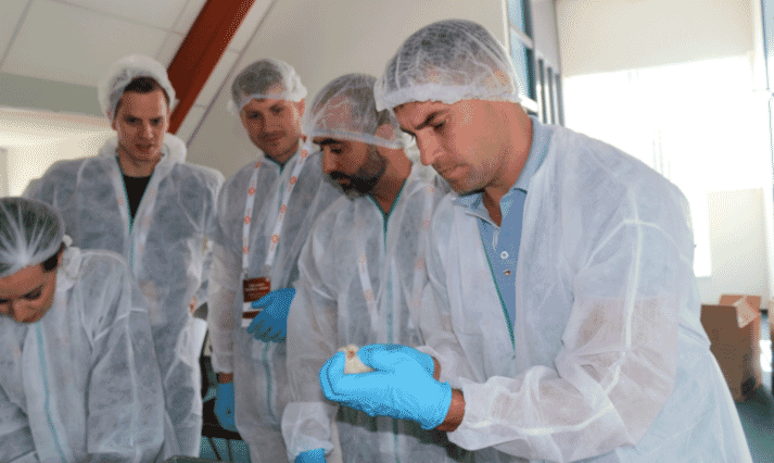 Cobb Europe Technical Seminar attendees participate in a hands-on exercise involving chick quality scoring.