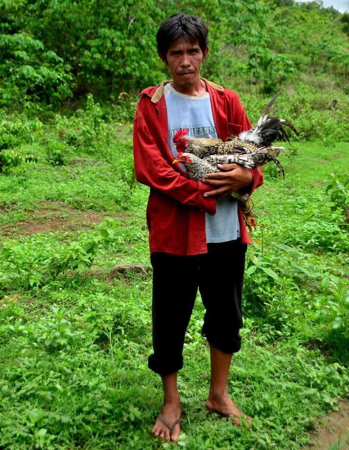 A farmer with Camarines chickens