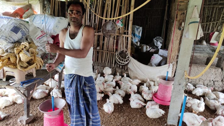 a man stands in the middle of a flock of white chickens