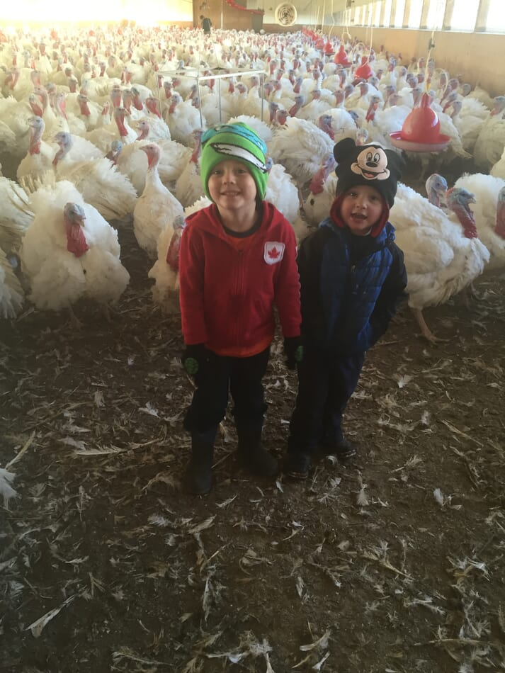 two young boys stand in the middle of a turkey flock