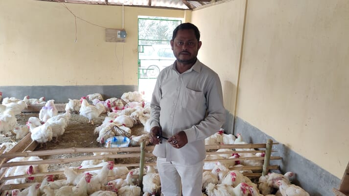 a man stands in a flock of white chickens
