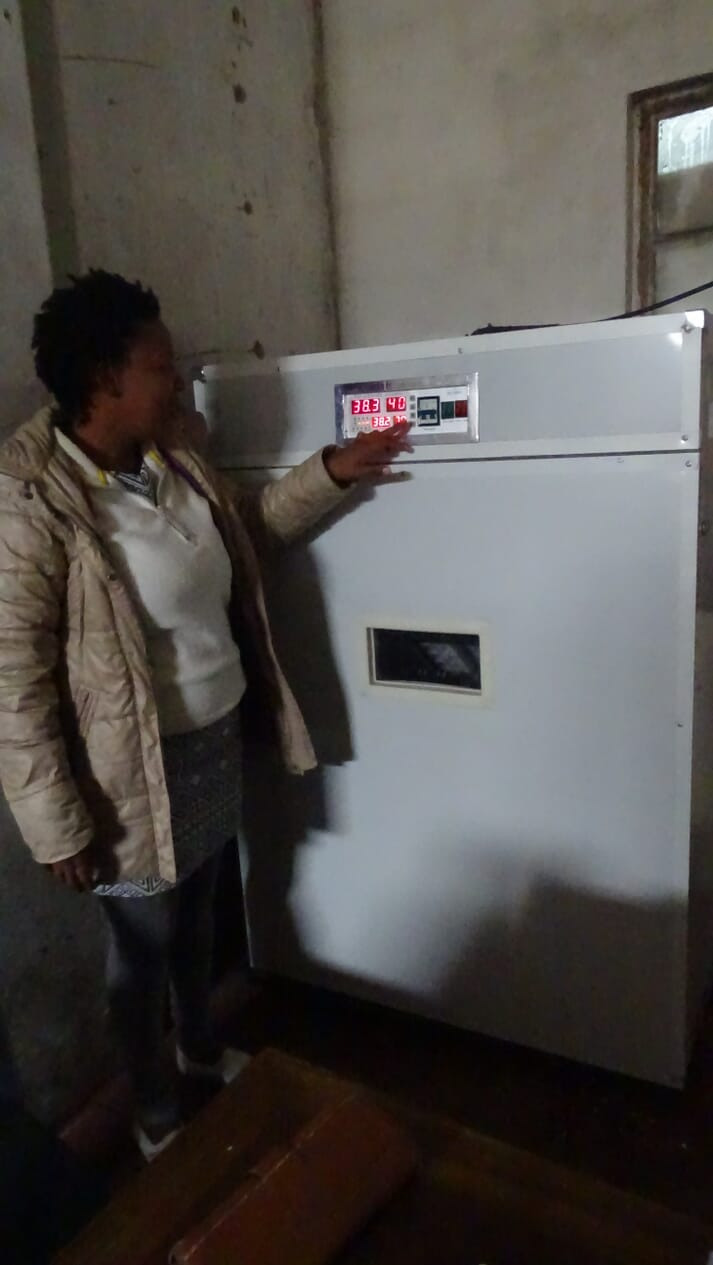 a woman standing in front of a tall aluminum box presses a button on it
