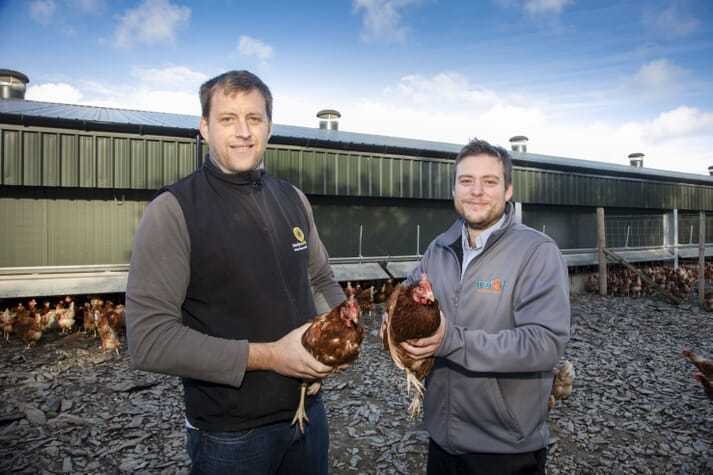 Llyr Jones and David Jones stand in front of the chicken shed, each holding a chicken