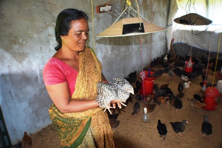 a woman holding a chick in a concrete building surrounded by other chicks