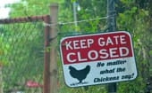Which explains this sign outside their farm! thumbnail