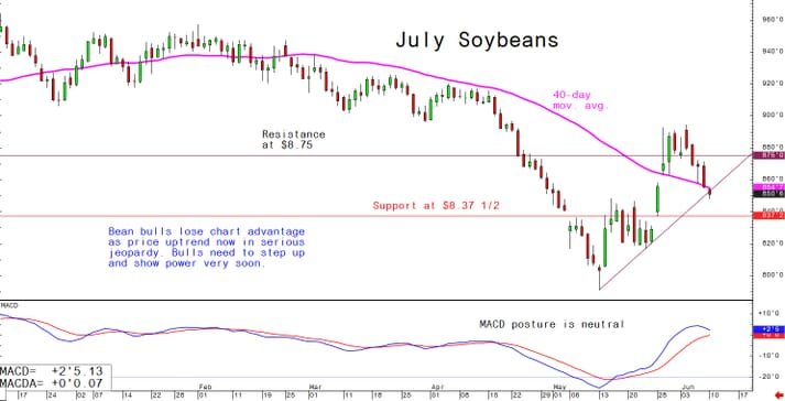 Bean bulls lose chart advantage as price uptrend now in serious jeopardy; bulls need to step up and show power very soon