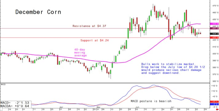 Bulls work to stabilise market; drop below the July low of $4.20 1/2 would produce serious chart damage and suggest downtrend