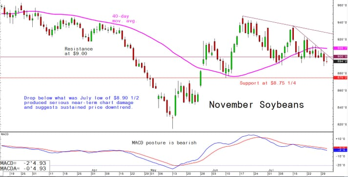 Drop below what was July low of $8.90 1/2 produced serious near-term chart damage and suggests sustained price downtrend