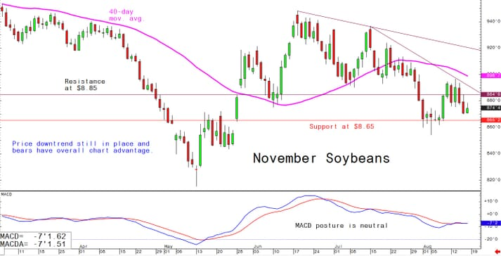 Price downtrend still in place and bears have overall chart advantage