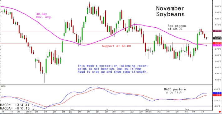 This week's correction following recent gains is not bearish, but bulls now need to step up and show some strength