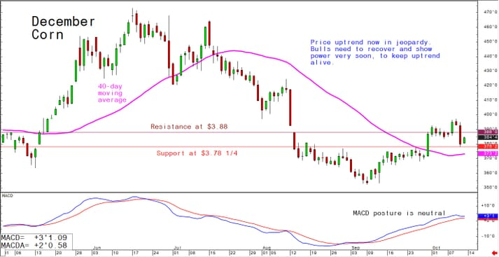 Price uptrend now in jeopardy; bulls need to recover and show power very soon to keep uptrend alive