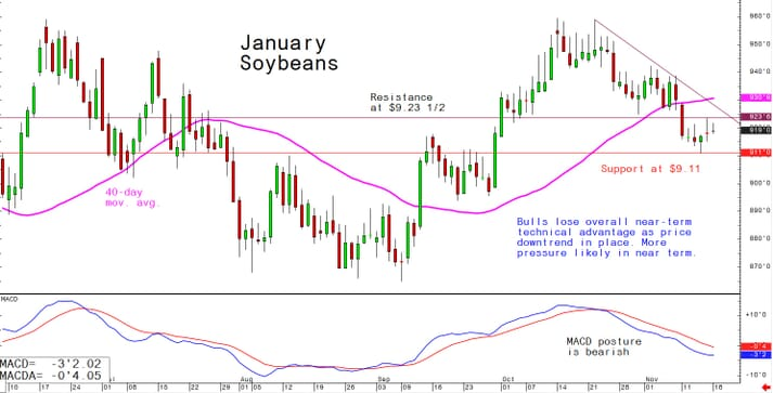 Bulls lose overall near-term technical advantage as price downtrend in place; more pressure likely in near term