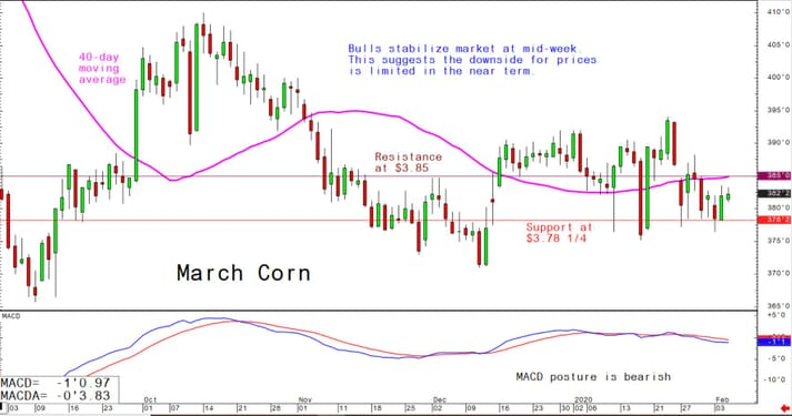 Bulls stabilise market at mid-week; this suggests the downside for prices is limited in the near-term