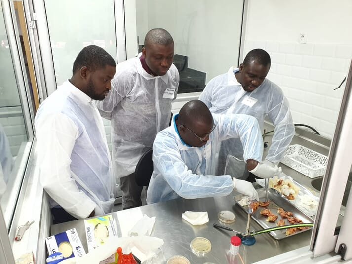 Four men wearing white hazmat suits inspect cooked chicken on a stainless steel counter