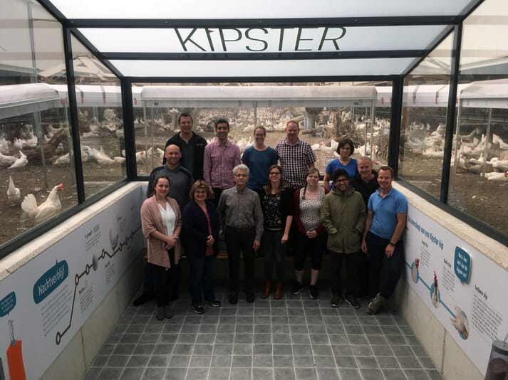 The European Layer Training Initiative, Kipster