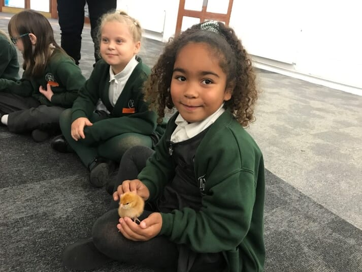 A child holds a chick