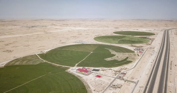 Mazzraty uses treated water to irrigate the desert land surrounding the poultry processing plant in Qatar