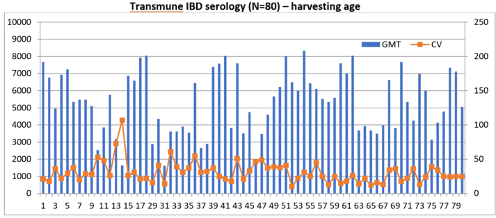 Figure 3: Harvesting age serology of Transmune-vaccinated flocks in India, 2018