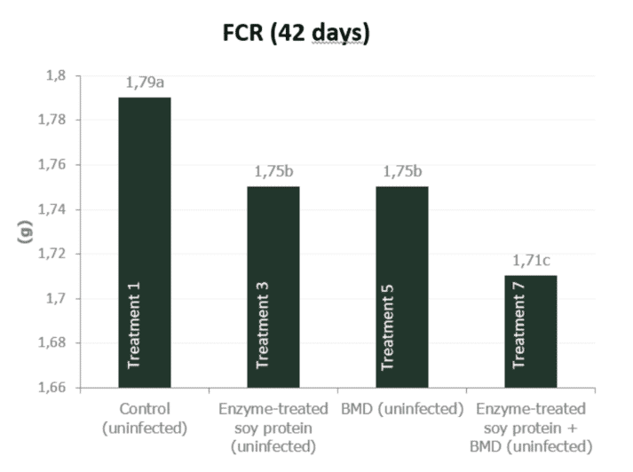 Figure 4b. Effect of feeding enzyme-treated protein (HP AviStart) in the starter feed and/or AGP (BMD) during the entire cycle on body weight and FCR of uninfected broiler chickens (0-42 days). Data with different subscripts are significantly different (P<0.05). Source: Rasmussen et al., 2019.