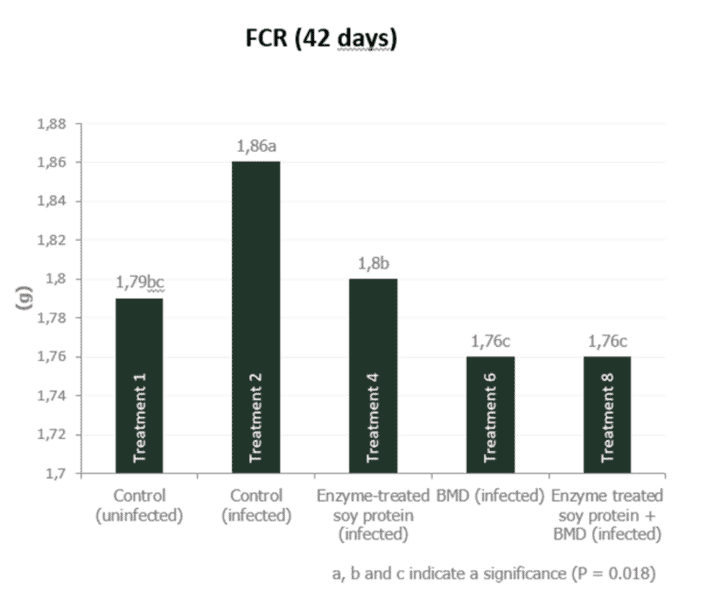 Figure 5b. Effect of feeding enzyme-treated protein (HP AviStart) in the starter feed and/or AGP (BMD) during the entire cycle on body weight and FCR of infected broiler chickens (0-42 days). Data with different subscripts are significantly different (P<0.05). Source: Rasmussen et al., 2019.
