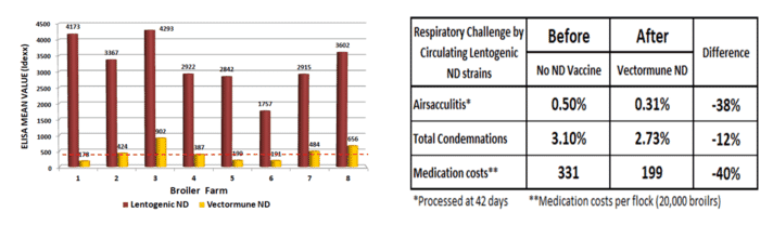 Figure 2. Comparative serological results and economic benefits before and after the inclusion of Vectormune® ND in a commercial broiler company located in an ND-free region