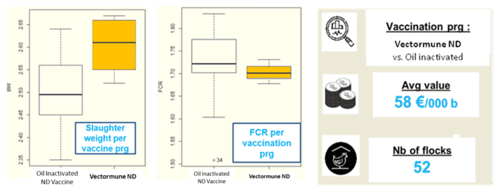 Figure 1. Statistical analyses of Vectormune® ND vs. Inactivated ND vaccines showing higher body weight (100 g) and a lower feed conversion ratio (3 points) in broiler flocks vaccinated with Vectormune® ND.