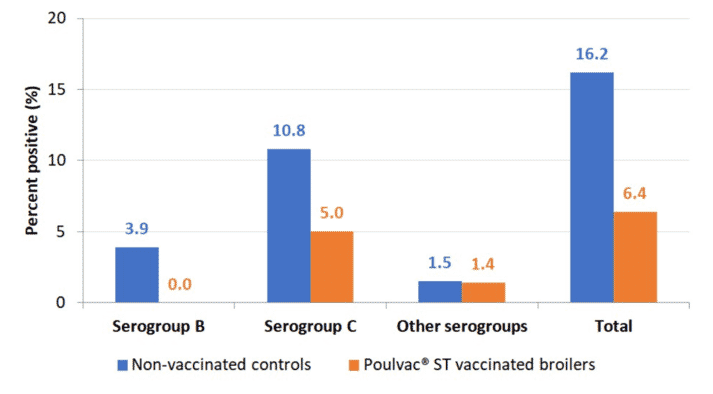 Figure 1. Salmonella-positive rinses at rehang in conventional broilers vaccinated against Salmonella with a modified-live vaccine compared to unvaccinated controls