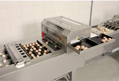 Ovograder Prinzen egg grading machineON