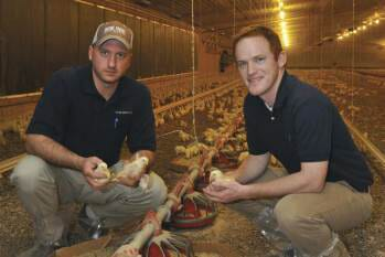 Zoetis Poultry Health Today