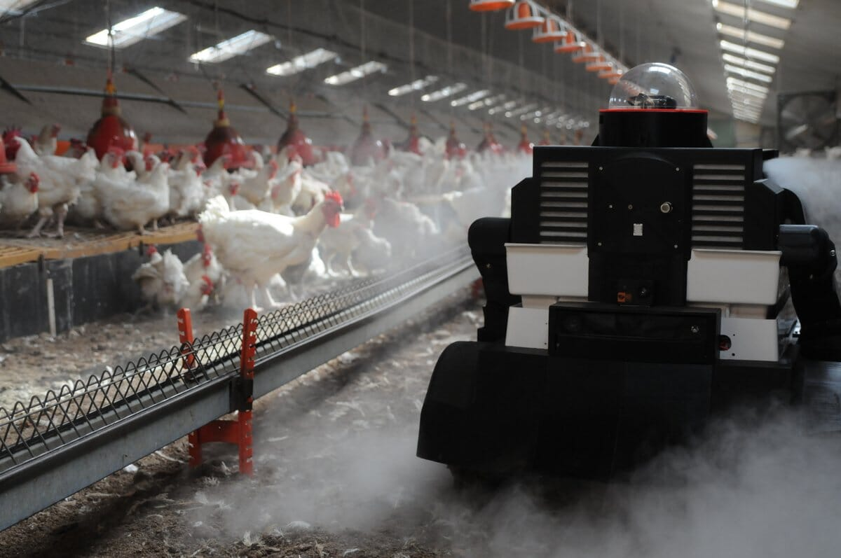 Flocking to digital: the future of poultry technologies