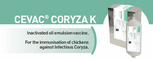 CEVA - CEVAC® CORYZA K For the immunisation of chickens against Infectious Coryza from CEVA SANTE ANIMALE