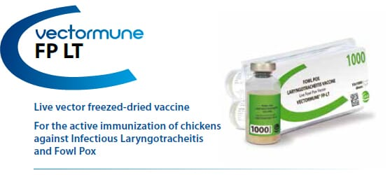 CEVA - VECTORMUNE® FP LT - For the active immunization of Chickens against Fowl Pox and Infectious Laryngotracheitis from CEVA SANTE ANIMALE