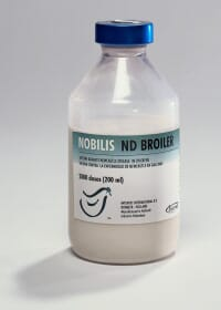 NOBILIS ND BROILER from MSD Animal Health