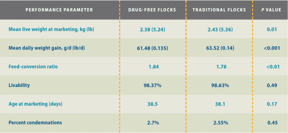 Figure 1. Performance results in drug-free and traditionally raised flocks